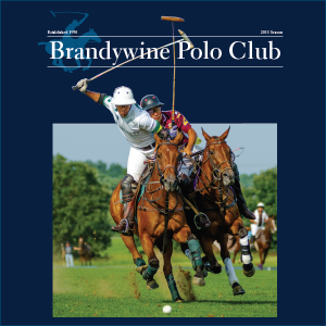 Friday Night Polo