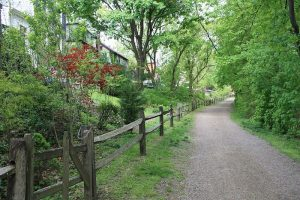 Montco Trail Challenge