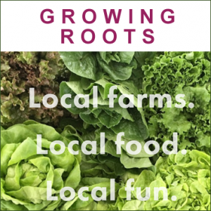 Growing Roots Partners