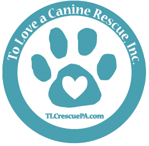 To Love a Canine Rescue