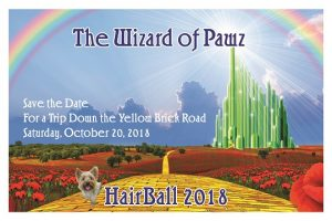 The HairBall- The Wizard of Pawz