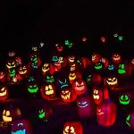 The Glow-A Jack-O-Lantern Experience