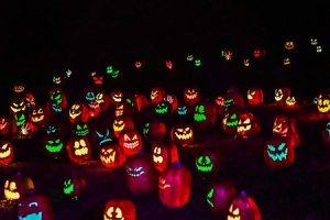 The Glow-A Jack-O-Lantern Experience