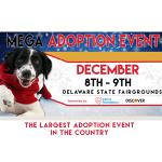 Mega Adoption Event - Brandywine Valley SPCA