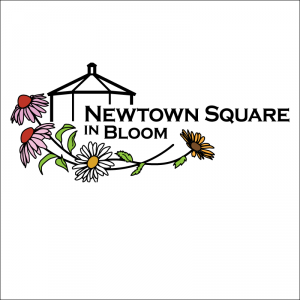 Newtown Square in Bloom
