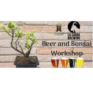 Beer and Bonsai