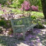 Wednesday Walkabouts at Jenkins Arboretum & Gardens