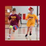 Little Hoops Stars Basketball