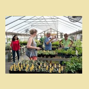 University of Delaware Botanic Garden Annual Spring Plant Sale