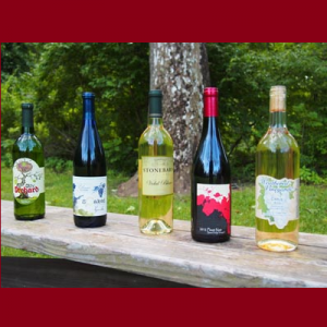 Taste of…Spring's New Wine Releases