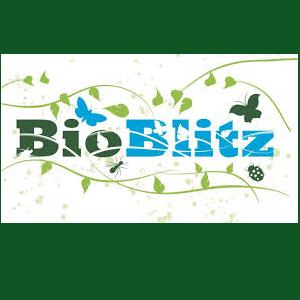 BioBlitz at Bartram's Garden