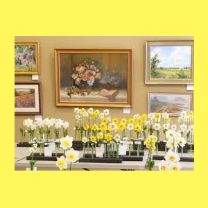 Annual Delaware Valley Daffodil Show