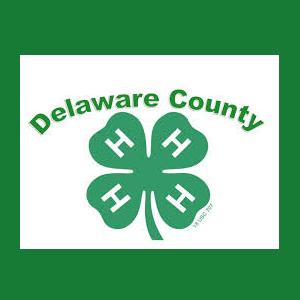 Delaware County 4-H Spring Fling Saturday, April 2...