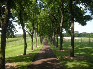 Inside the Private Karamoor Estate Winery: Tour an...