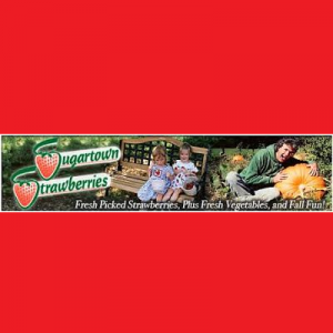 Visit Sugartown Strawberries
