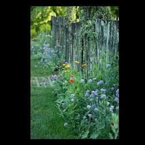Chanticleer: A Pleasure Garden, Guided Tour