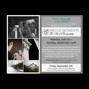 Timeless Moments; the Art of Photography