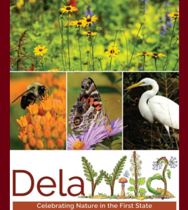 DelaWILD: Celebrating Nature in the First State