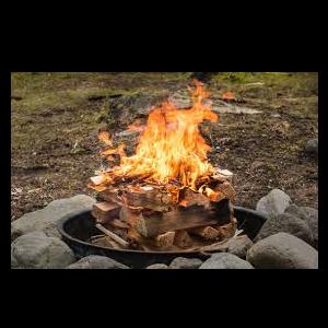 Night Hike & Campfire