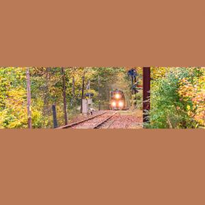 Fall Foliage Express