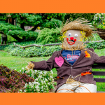 Scarecrows in the Village
