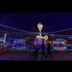Franklin Square Holiday Festival 2019, Electrical ...