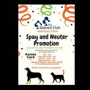 Spay & Neuter Discounts