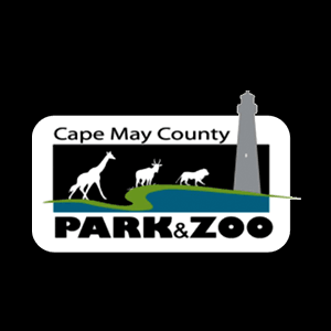 Cape May County Virtual Zoo School