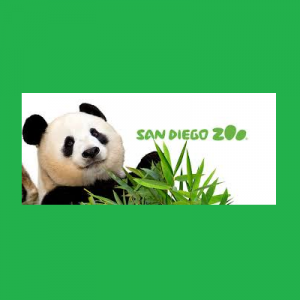 San Diego Zoo Virtual Tour