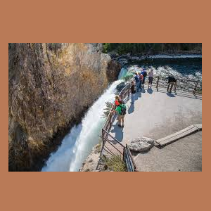 Yellowstone National Park Virtual Field Trip