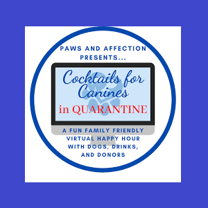 Paws and Affection Cocktails for Canines in QUARANTINE