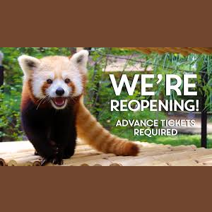 Elmwood Park Zoo - Re-Opening!