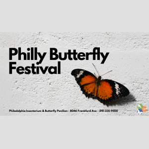 Philly Butterfly Festival