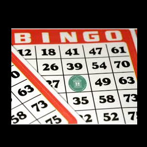 Narberth Library Bingo Fundraiser
