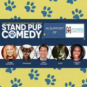 Stand Pup Comedy Show with Fred Stroller from Sein...