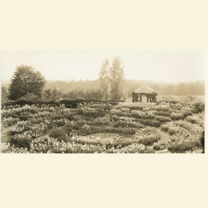 Lost Gardens of the Main Line, 1880-1930