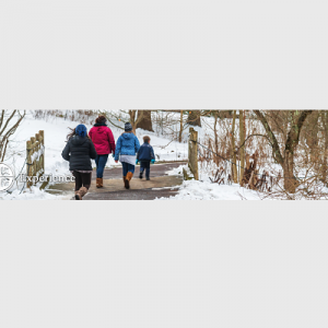 Get Outside! Tips for Finding Hiking and Hidden Nature in the Delaware Valley