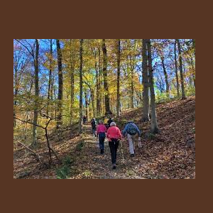 Trail Hike with the Chester County Trail Club