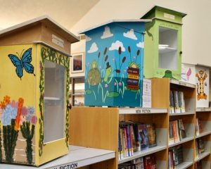 Little Libraries Virtual Silent Auction