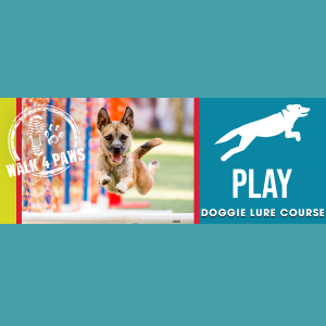Walk for Paws 2021: Doggie Lure Course