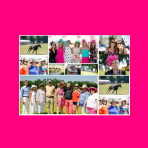 Chester County Hospital Polo Cup