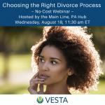 Vesta Divorce: Choosing the Right Divorce Process