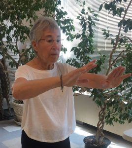 Tai Chi by Zoom Video