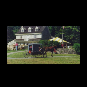 Harriton Farmstead Fair